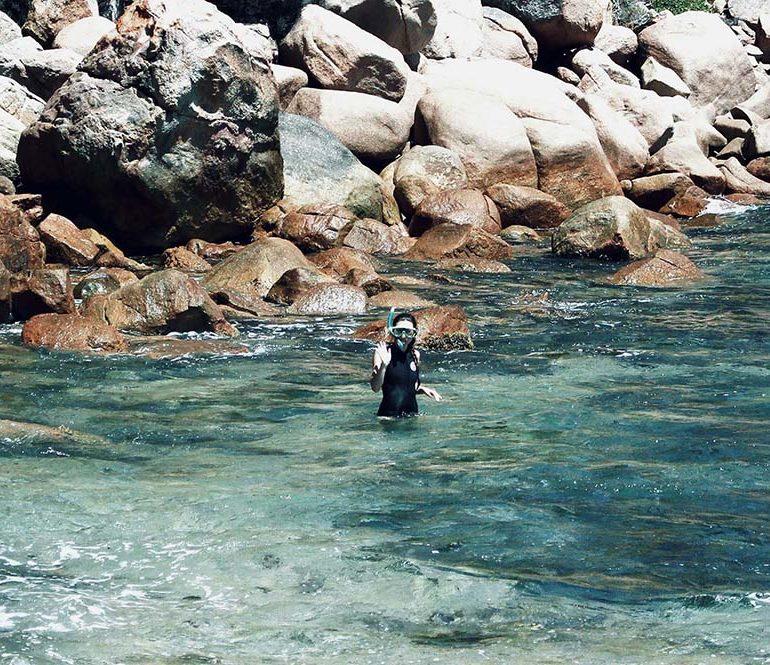 MFARAI-Collab-Woody-Island-Ecotours